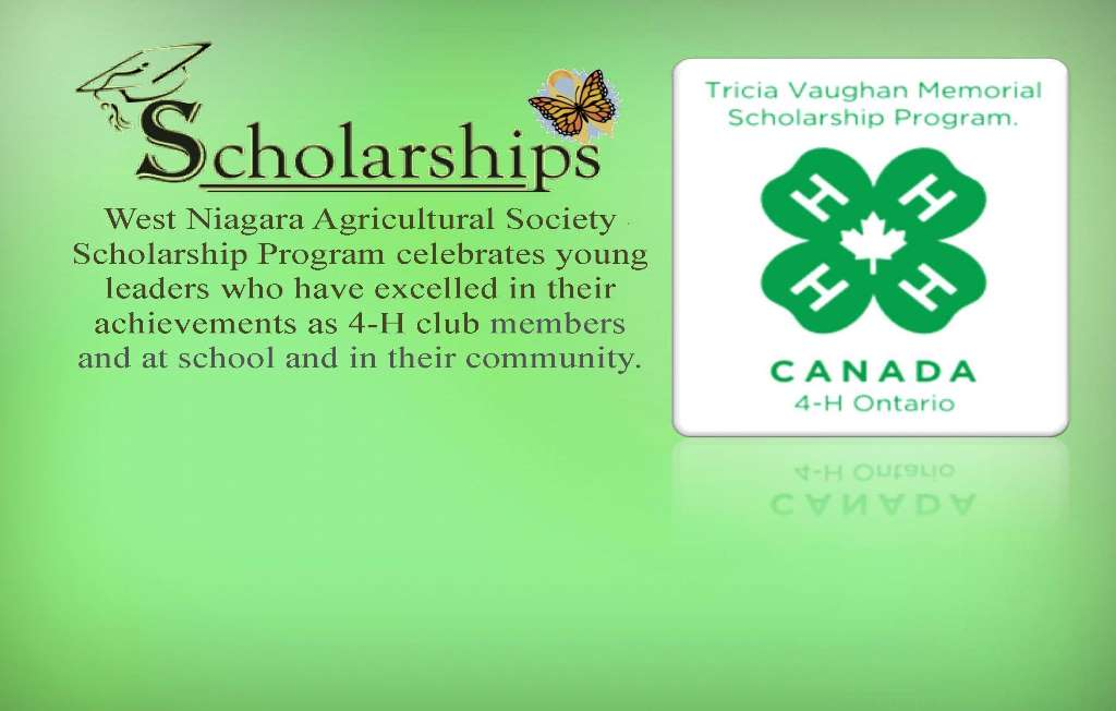 Scholarship for 4-H image